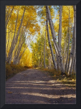 Last Dollar Road Near Telluride, Colorado, Autumn
