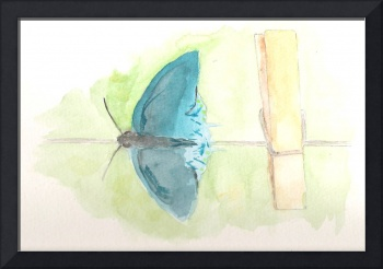 Clothesline Butterfly