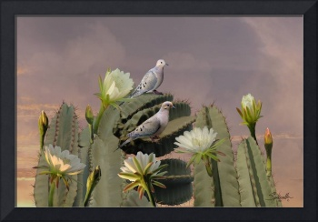 Mourning Doves on Flowering Cactus