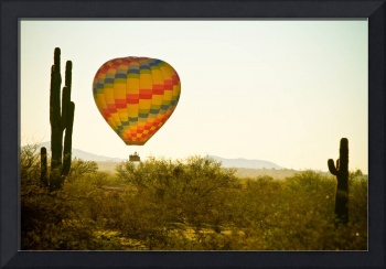Hot Air Balloon in the Beautiful Lush Arizona Dese