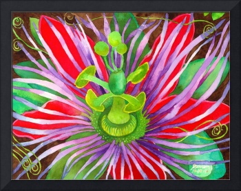 Red Passionflower