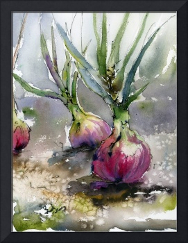 Red Onions Watercolors Food Art