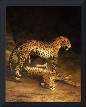Jacques Laurent Agasse, Two Leopards Lying in the