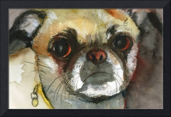 Ginger Pug Bug, Watercolor Painting Animal Dog Art
