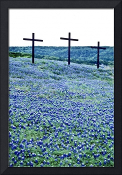 Three Crosses in Blue Bonnets