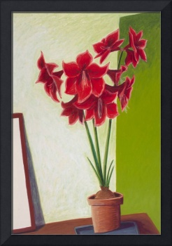 Floral: Red Amaryllis on Green