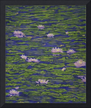 Fine Art Prints Water Lilies Lily Art Pond Flowers