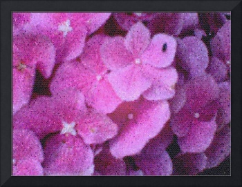 Stained Glass Hydrangea