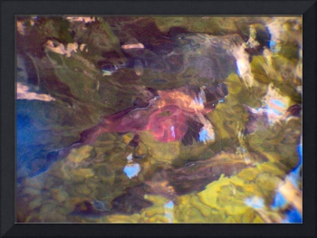 Abstracted Salmon