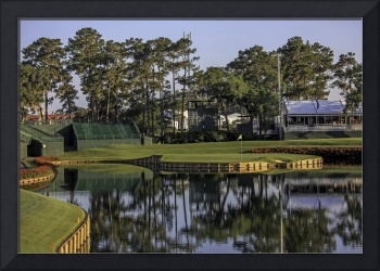 TPC Sawgrass Golf Course Hole 17 Photo 5