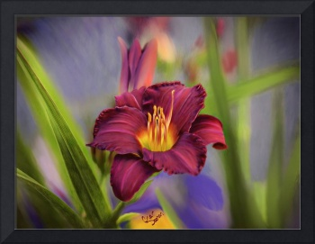 Scarlet Day Lily