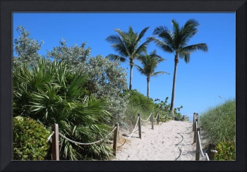 Sandy Beach Path with Rope Fence and Palms