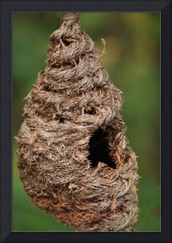 PineBraided*BirdHouse