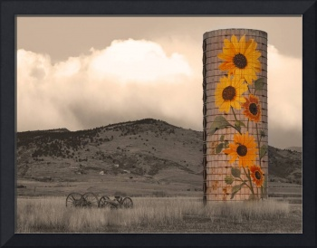 Sunflower Silo in North Boulder County Colorado Se
