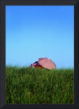 Beach umbrellas, dune grass and sky, Cape Cod