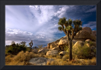 Rocks and Skies Of The Desert (color)