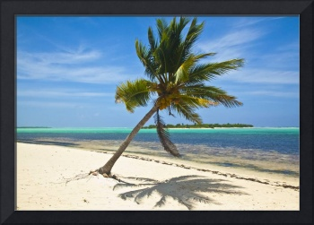 Tranquility of Little Cayman