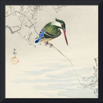 A Kingfisher on a Branch by Ohara Koson