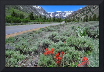 The Road into Lundy Canyon