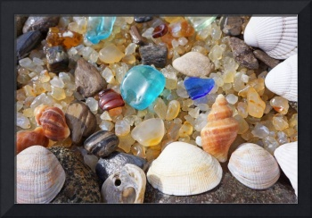 Seashells Art Prints Coastal Beach Sea Glass