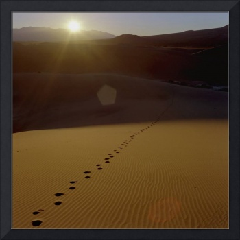 Footsteps in the Sand Dunes, Death Valley, Califor