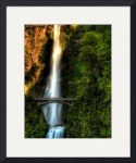 Multnomah Falls by Mark Cullen
