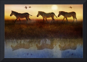 zebras sunset