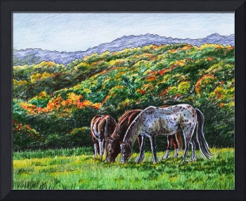Grazing Horses At The Fall Ranch
