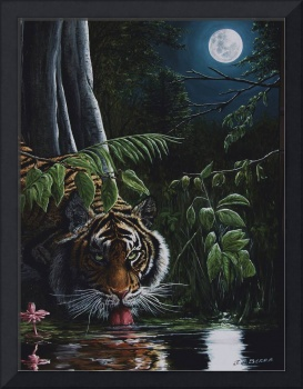 Tiger, king of the night.