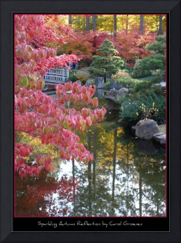 Sparkling Autumn Reflection Poster