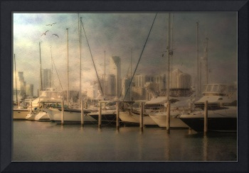 Sail Boats and Miami Skyline