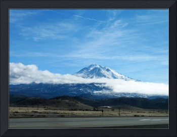 California - Shasta 1