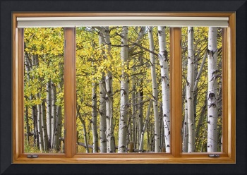 Autumn Aspen Forest Classic Wood Window View