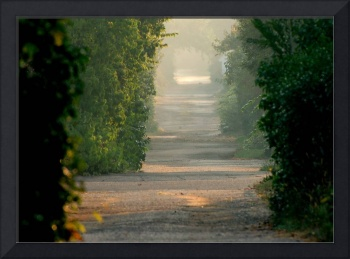 Early light - back alley