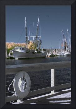 Shrimp Boats, Charleston, South Carolina