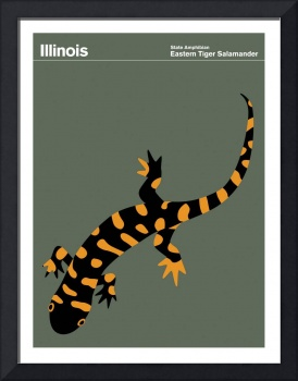State Posters - Illinois State Amphibian: Eastern