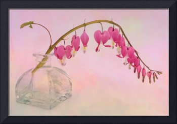 Dicentra in a Glass Vase