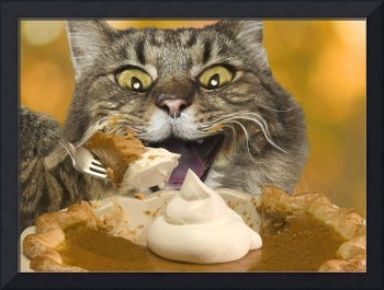 Thanksgiving-Cat