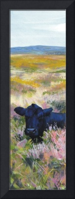 Time For A Nap - Painting of a Dexter Cow