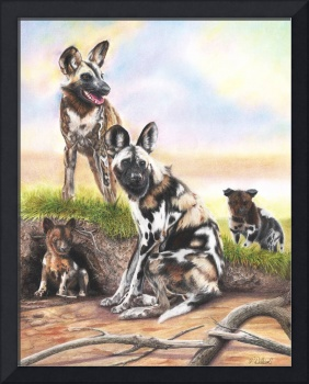 Painted African Wild Dogs