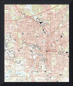 Tallahassee Florida Map (1999)