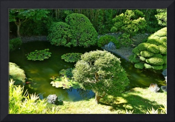 SF Japanese Tea Garden Study 9