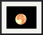 Super Moon IMG_8528 by Jacque Alameddine
