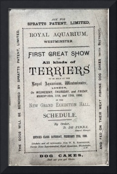 Poster advertising the Allied Terrier Club Show at