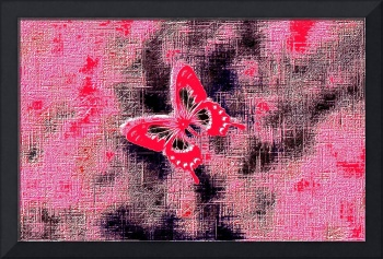Orange White Butterfly with Magenta Violet Backgro