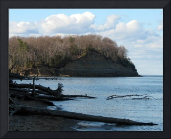 Calvert Cliffs 13