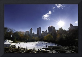 Central Park On Ice