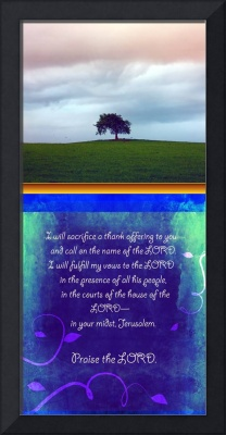 Psalm 116 lonely tree