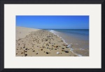 Cape Cod : Peaked Hill Beach by Christopher Seufert