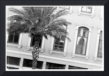 New Orleans Windows - Black and White